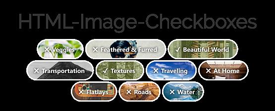 Custom HTML-Checkboxes